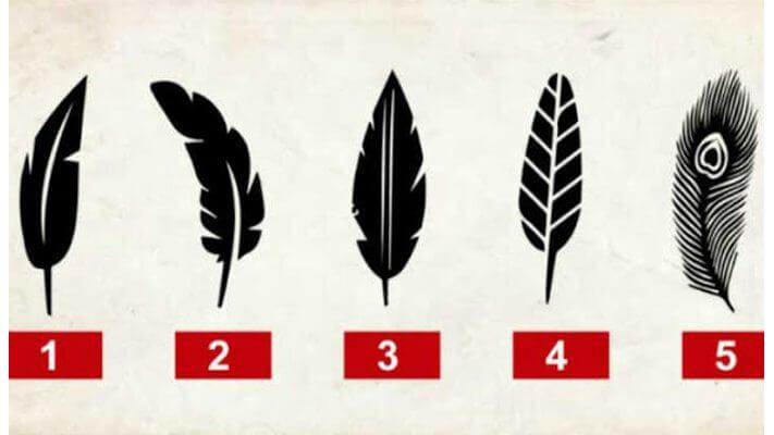 Выберите перо и узнайте скрытые черты своего характера