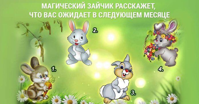 Выберите зайца и узнайте, что ждет вас в следующем месяце