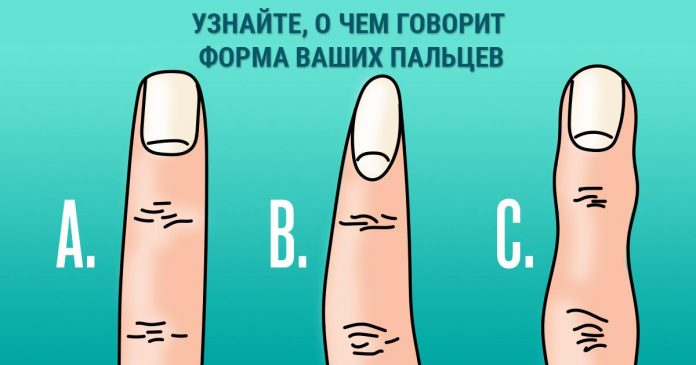 О чем может рассказать форма пальцев на руках