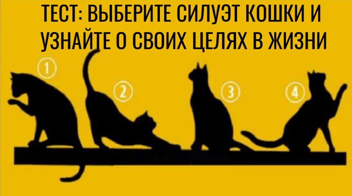 Выбранный силуэт кошки раскроет ваши жизненные цели