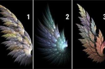 крыло ангела принесёт удачу
